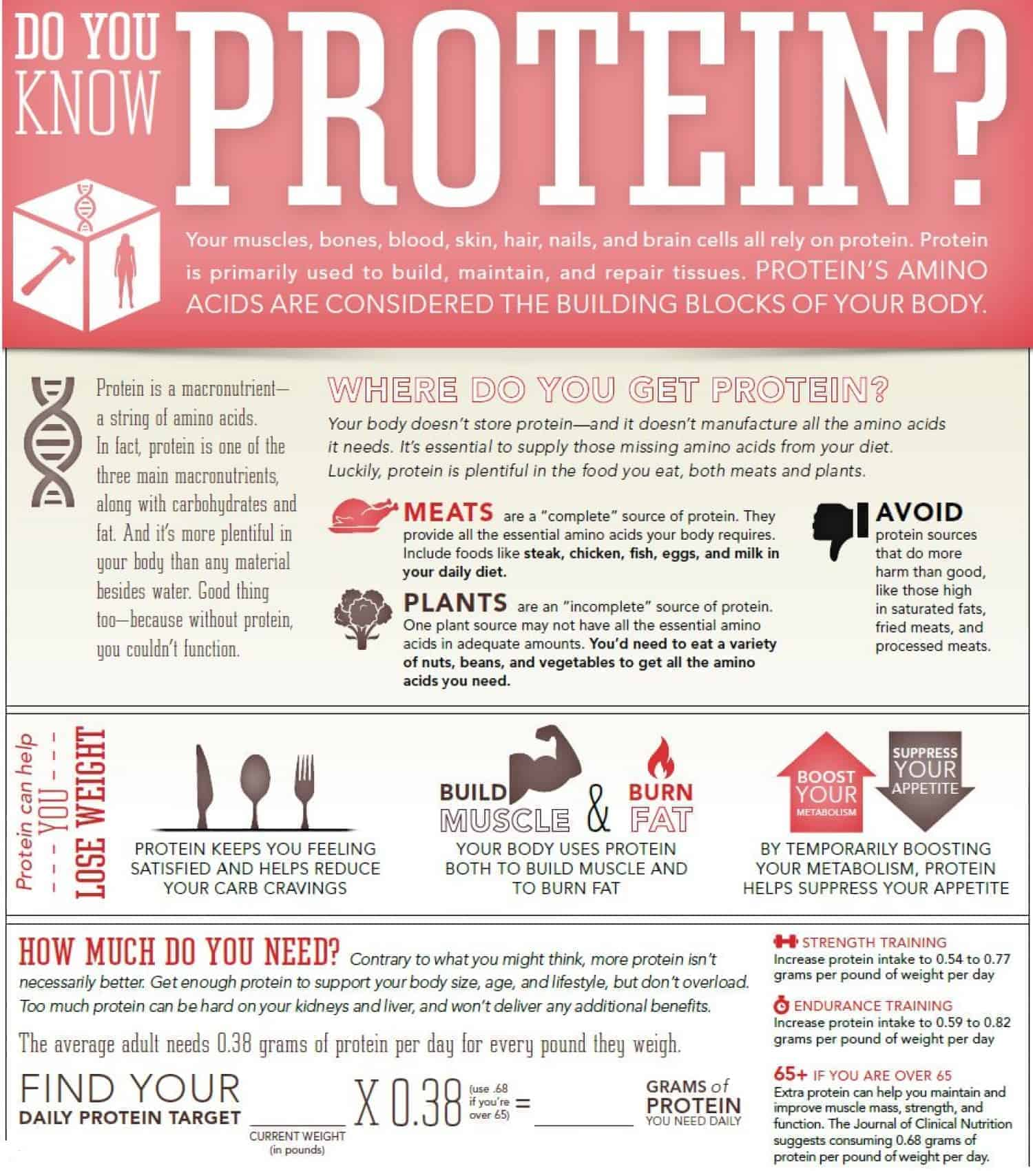 Muscle Growth Protein Jpg