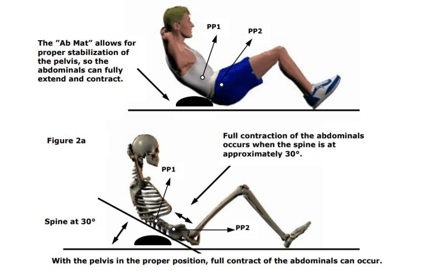 abmat anatomy